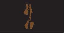 mybigplunge-logo